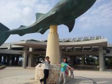 沖縄ボーナス→ちゅら海水族館