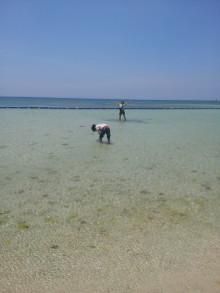 GWin沖縄